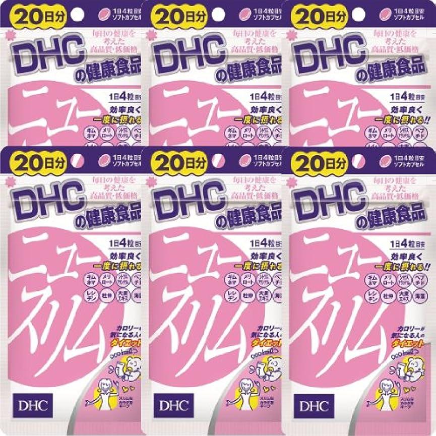 甘いはねかける最小DHC ニュースリム 20日分(80粒)×6個
