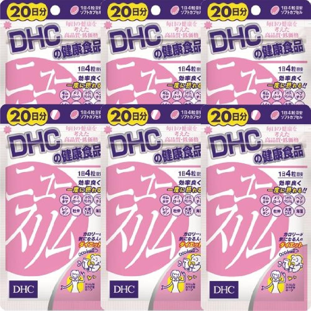 マイルド風邪をひくではごきげんようDHC ニュースリム 20日分(80粒)×6個