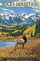 ロッキーマウンテン国立公園コロラド州––Fall and Elk 16 x 24 Giclee Print LANT-85144-16x24