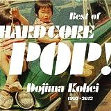 BEST OF HARD CORE POP