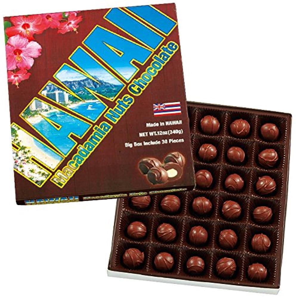教育する飲食店クマノミハワイ 土産 ハワイ ビッグサイズ マカデミアナッツチョコレート 1箱 (海外旅行 ハワイ お土産)