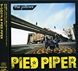 PIED PIPER(初回限定盤)(DVD付) 画像