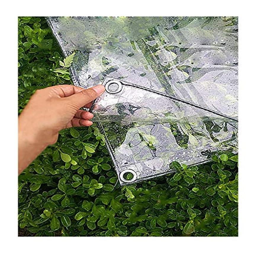 破壊モノグラフ治療FH おむつ、0.3mm引き裂き防止/雨防止の透明な防水シート、園芸で広く利用された (サイズ さいず : 1.6Mx3M)