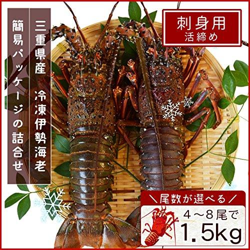 三重県産 伊勢海老 詰合せ 5尾で約1.5kg 刺身用 瞬間 冷凍 伊勢エビ