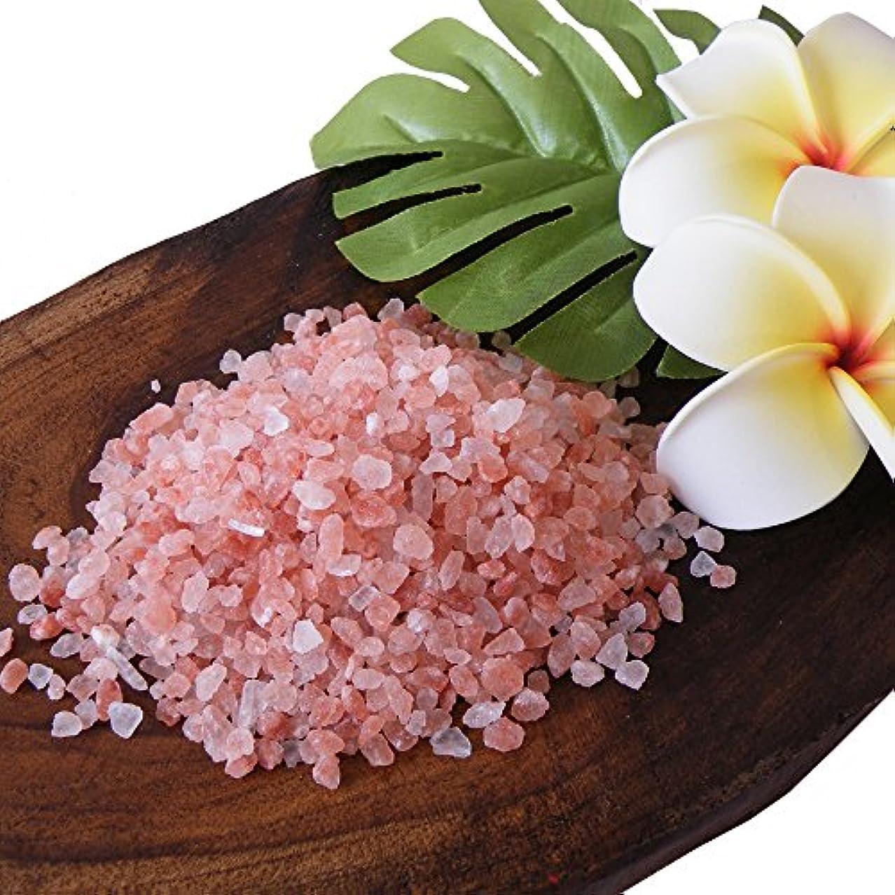 ヒマラヤ岩塩 バスソルト ローズソルト (ダークピンク岩塩)小粒タイプ お試し1kg(ソルト内容量970g)