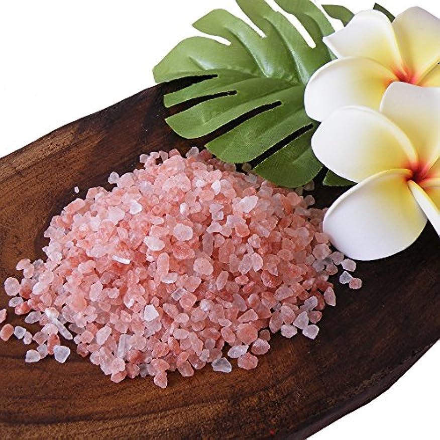 騒からかう増幅ヒマラヤ岩塩 バスソルト ローズソルト (ダークピンク岩塩)小粒タイプ お試し1kg(ソルト内容量970g)