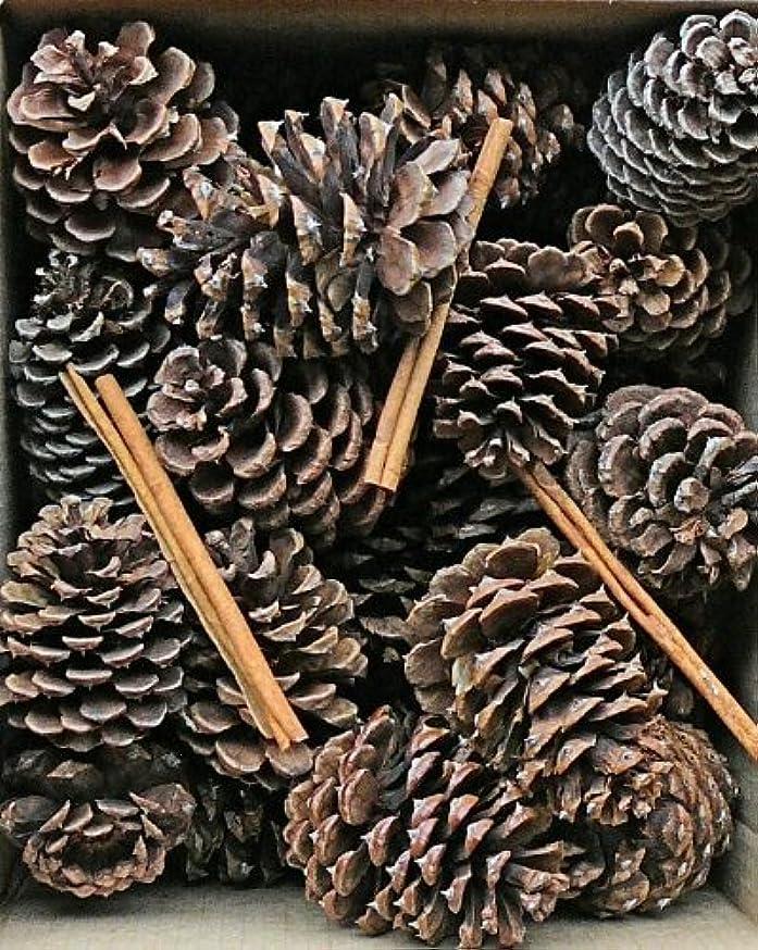 たらい気になる配列Cinnamon Scented Pine Cones with Cinnamon Sticks 30 perボックスブラウン(ナチュラル) Case of 180 pine cones