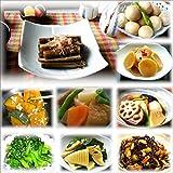 18袋京惣菜詰め合わせJセット(9種類18食 合計2.7kg) 惣菜 お惣菜 おかず 惣菜セット 詰め合わせ お弁当 無添加 京都 手つくり