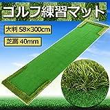 STARDUST ゴルフ 練習 マット 300cm×58cm パター チップ 景品 SD-GL008