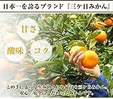 静岡県産 特別栽培 三ケ日みかん 1kg (訳あり)