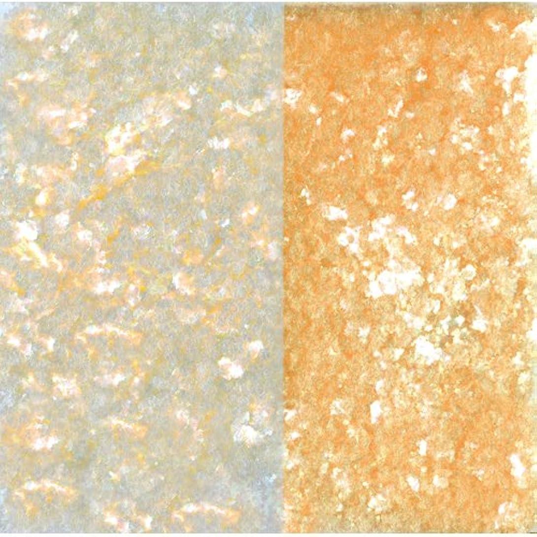 磨かれた広告するみぞれピカエース ネイル用パウダー ピカエース エフェクトフレークH L #417 オレンジ 0.2g アート材
