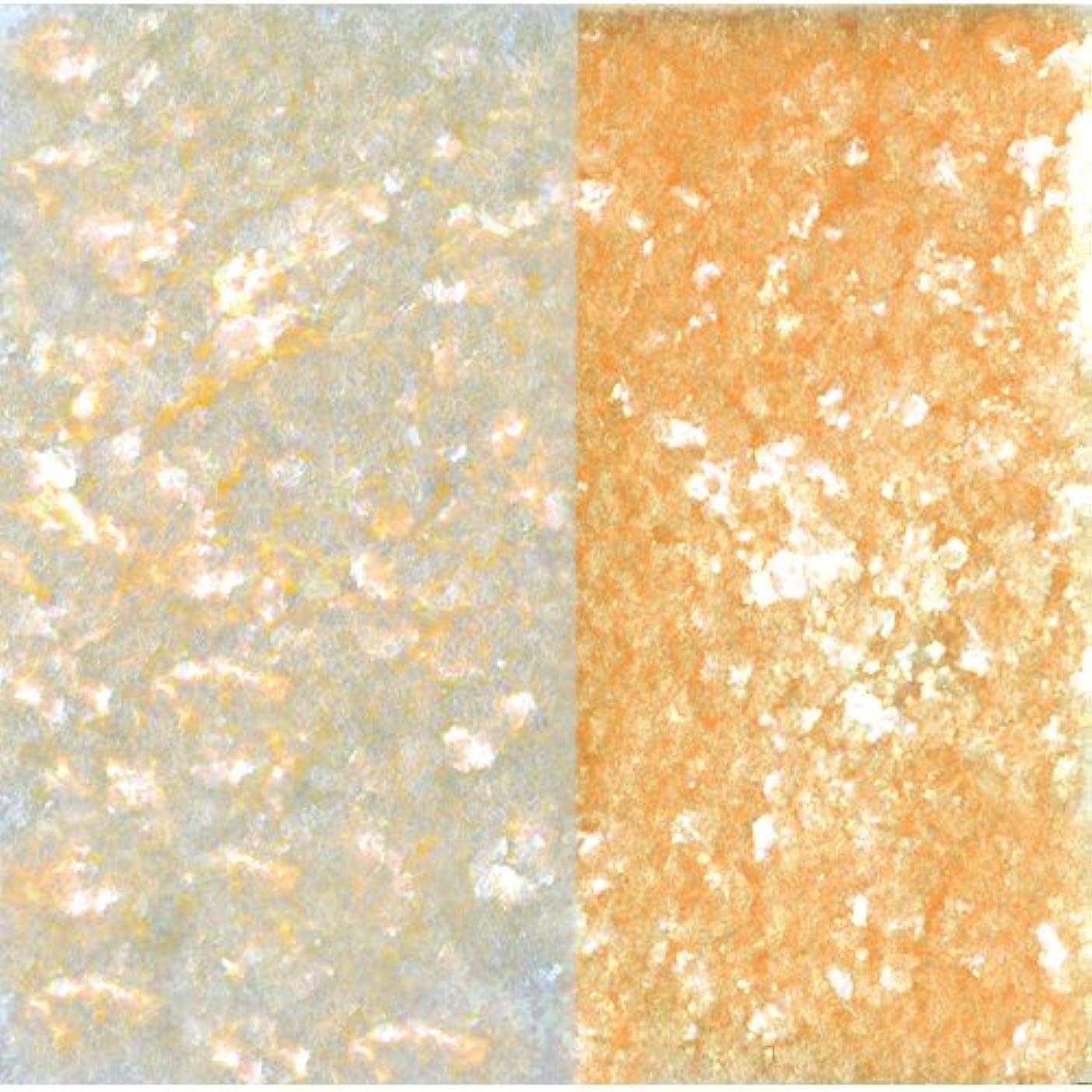 特徴づける接辞スチールピカエース ネイル用パウダー ピカエース エフェクトフレークH L #417 オレンジ 0.2g アート材