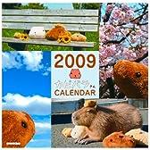2009 カピバラさん 月めくりカレンダー 壁かけタイプ ([カレンダー])