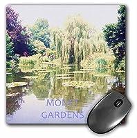 3drose LLC 8x 8x 0.25インチMonet 's Gardensマウスパッド(MP 28354_ 1)
