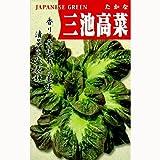 葉菜類 種 三池大葉高菜 小袋(約8ml)