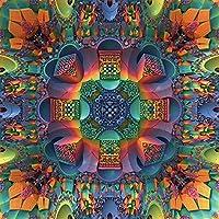 My Wonderful Walls Groovy Baby Geometric Wall Sticker Art by Lyle Hatch, Medium, Multicolored by MyWonderfulWalls