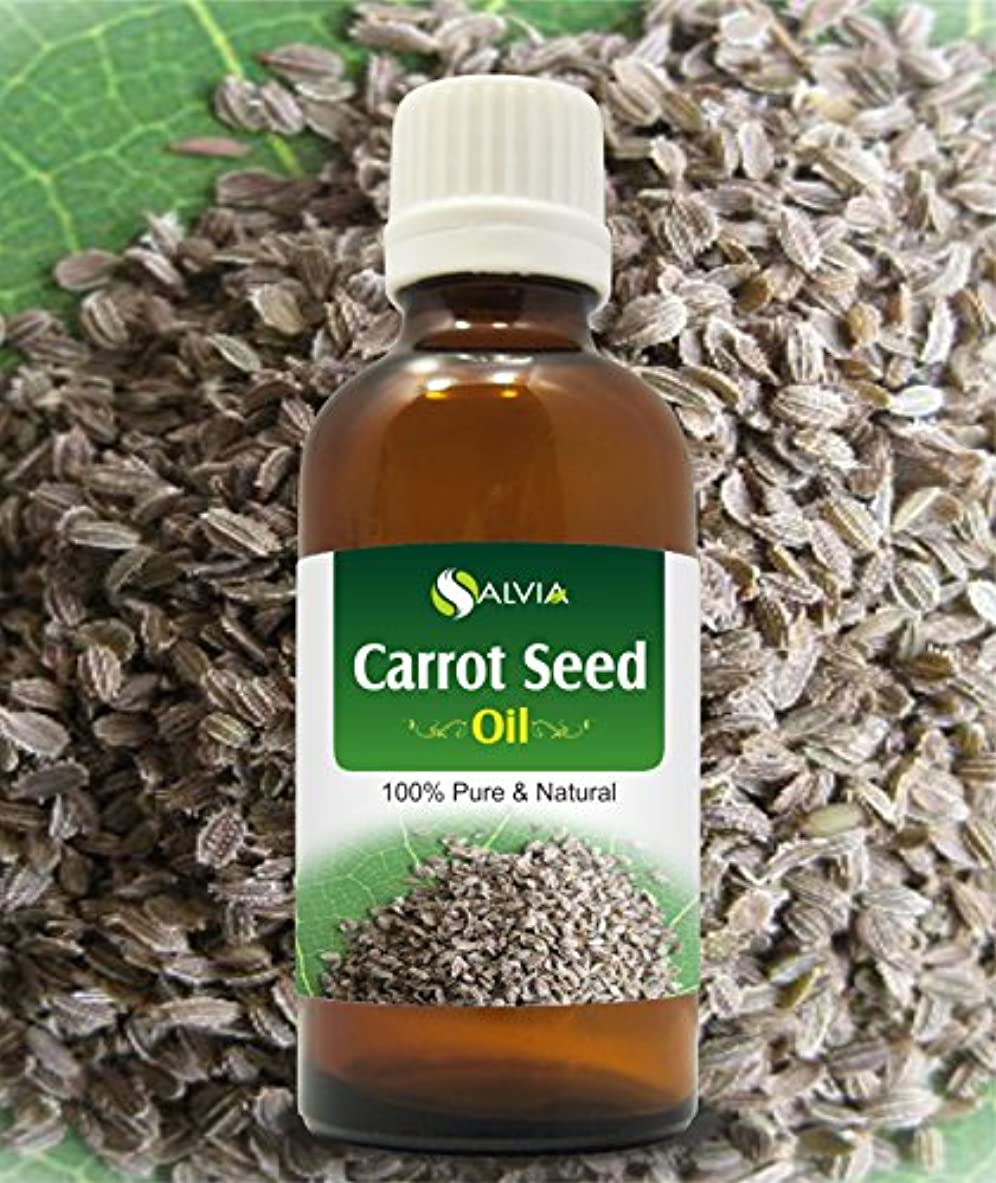 励起整然とした残酷なCARROT SEED OIL 100% NATURAL PURE UNDILUTED UNCUT ESSENTIAL OILS 50ML