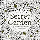 Secret Garden: An Inky Treasure Hunt and Coloring Book -