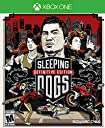 Sleeping Dogs: Definitive Edition (輸入版:北米)