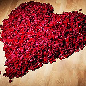 OUYOU 造花 花びら フラワーシャワー 薔薇 枯れない 花 バレンタインデー Valentine's Day 結婚祝い 誕生日 出産祝い 母の日 父の日 お祝い ギフト 約500枚セット