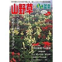 山野草とミニ盆栽 2007年 07月号 [雑誌]