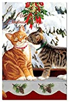 Tree-Free Greetings EcoNotes 12-Count Christmas Card Set with Envelopes 4 x 6 Kitten Kiss (93447) [並行輸入品]