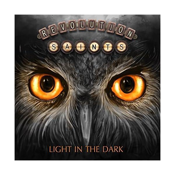 LIGHT IN THE DARK (DELUX...の商品画像