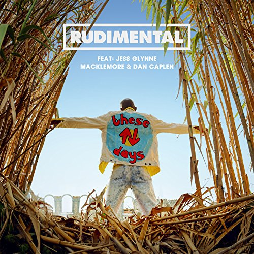 These Days (feat. Jess Glynne,...