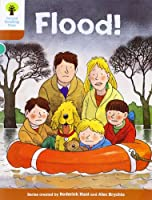 Oxford Reading Tree: Level 8: More Stories: Flood!