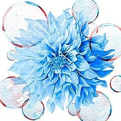 Ms.OOJA「花」のジャケット画像