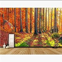 Lcymt 風景壁紙ステッカー秋の森の木の写真の壁紙壁画3Dのリビングルームの寝室の自己接着ビニール/シルクの壁紙-200X140Cm