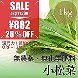 小松菜 1袋 1kg 無農薬・無化学肥料・還元力(抗酸化力)ORP+12mV