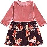 DuAnyozu Toddler Little Girls Velvet Floral Long Sleeve Dresses Fall Winter Kids Princess Ruffle Skater Dress Skirt Outfit