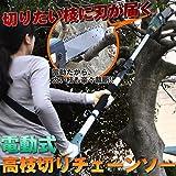 電動高枝切りチェンソー 高枝健太郎くん ET1208