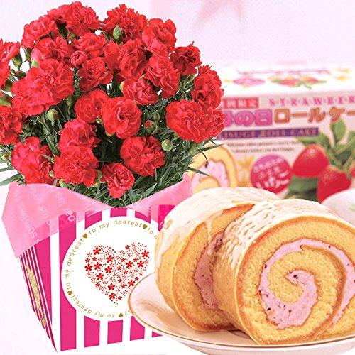 赤カーネーション5号鉢と苺ロールケーキのセット 花とスイーツ 母の日ギフト