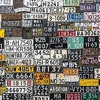 ポスター ウォールステッカー 正方形 シール式ステッカー 飾り 30×30cm Ssize 壁 インテリア おしゃれ 剥がせる wall sticker poster ユニーク ナンバー プレート カラフル 写真 008545