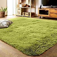 YJ.GWL ラグカーペット 緑 ラグマット2畳 12色選べる 120*160cm ふわふわじゅうたん カーペット 洗える 夏 センターラグ グリーン