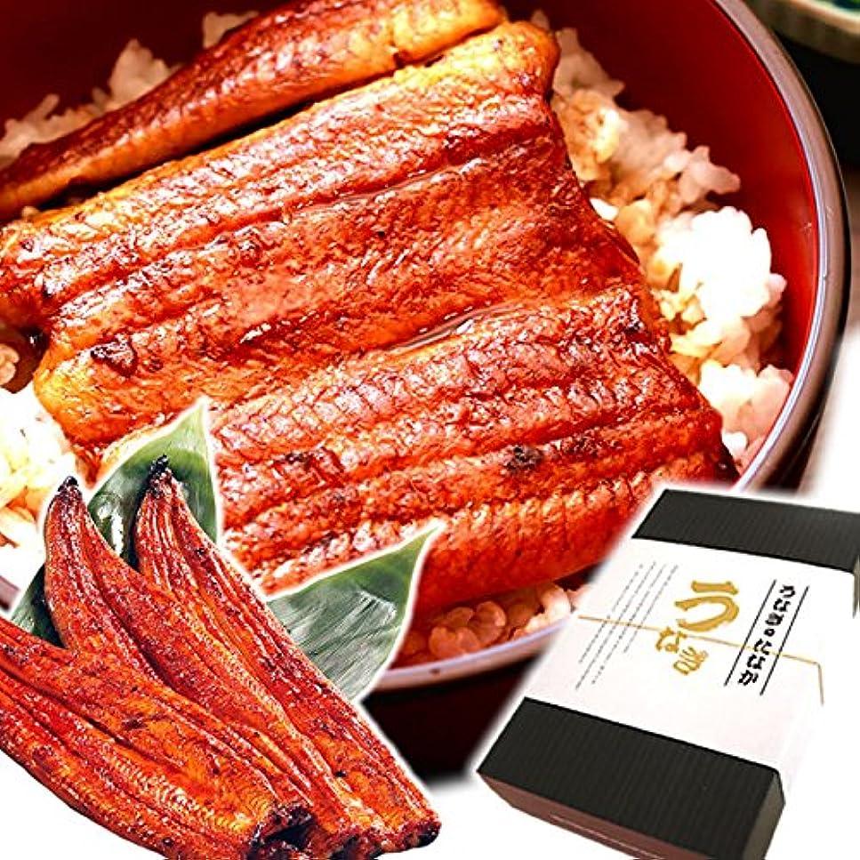 追加する綺麗な結婚した国産うなぎ 敬老の日 ギフト 国内産鰻(うなぎ) 特大長蒲焼3本 ギフトBOX付