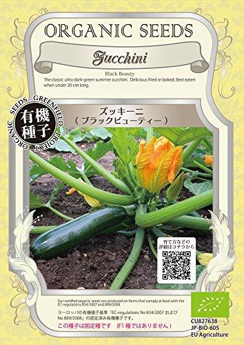 グリーンフィールド 野菜有機種子 ズッキーニ <ブラックビューティー></p> [小袋] A236