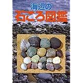 海辺の石ころ図鑑