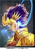 聖闘士星矢EPISODE.G (4) 【初回限定特装版】 (チャンピオンREDコミックス)