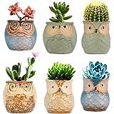 Betrome Owl Pot 2.5 Inch, Ceramic Flowing Glaze Succulent Pots, Owl Planter, Mini Ceramic Pots, Bonsai Owl Pot with a Hole fo