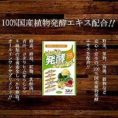 酵素 サプリ どっさり発酵ダイエット 60粒 100%国産植物発酵エキス (酵素・酵母・紅麹・乳酸菌・青汁・コタラヒム 配合)