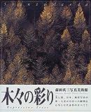 木々の彩り (前田真三写真美術館)