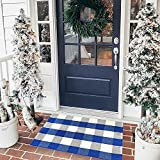 "EARTHALL Cotton Buffalo Blue and White Plaid Rugs 2'x3', Hand-Woven Check Door Mat, Hallway Runner, Washable Outdoor Rug Kitchen/Front Porch/Living Room/Laundry Room/Bathroom/Bedroom (23.6""x35.4"")"
