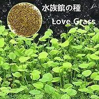 Rosepoem 水族館植物の種子 1袋 水草種子 水の緑の植物種子 愛の草