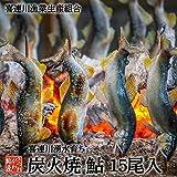 鮎の塩焼き 15尾入り 鮎の炭火焼 喜連川湧水育ち 鮎の商品画像