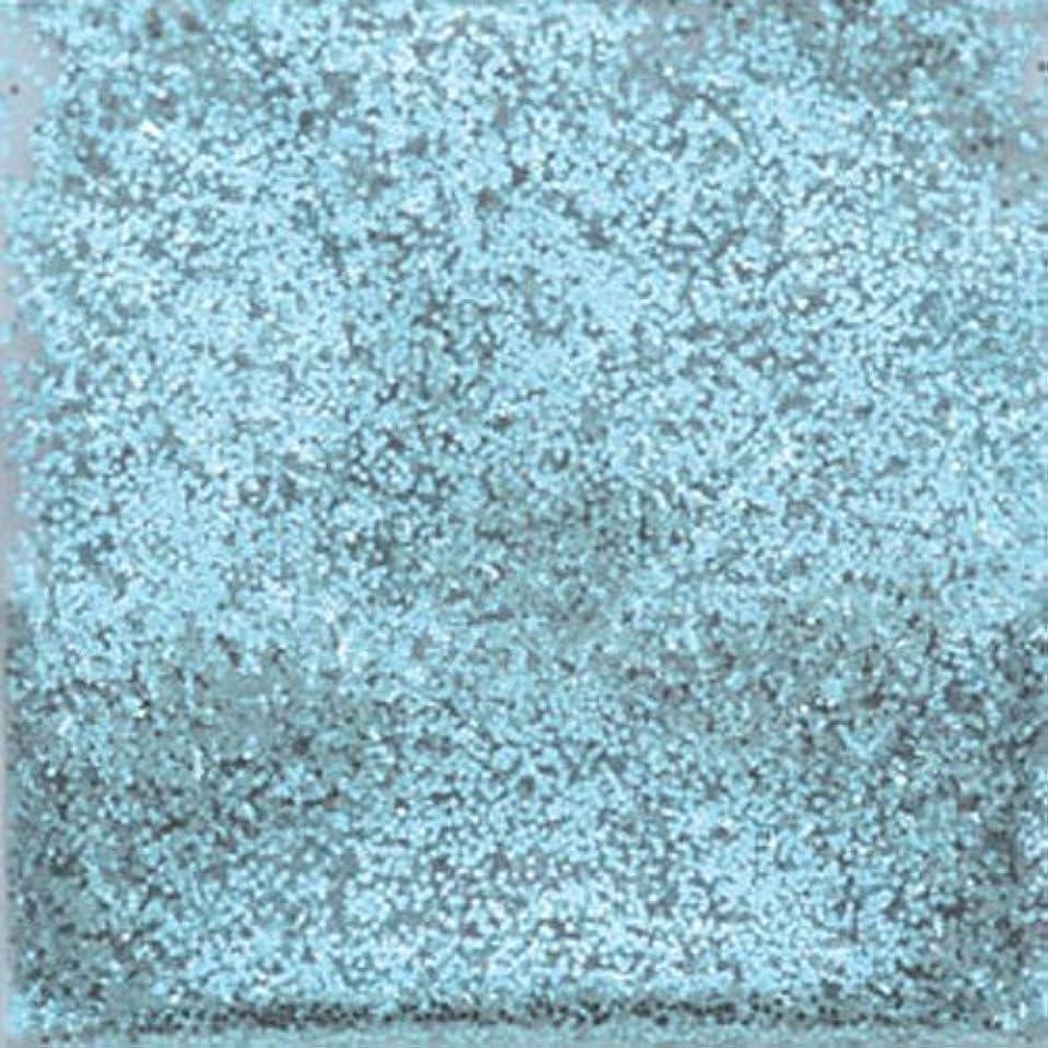 杖郵便番号良心的ピカエース ネイル用パウダー ラメシャインN S #316 ライトブルー 0.7g
