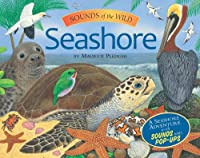 Seashore (Sounds of the Wild)
