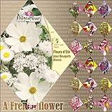 フランスの花の種 Royal Fleur MIX 10袋セット ワイルドフラワーMIX